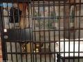 زندان مجلل (4)