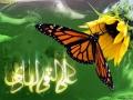 ولادت امام هادی (ع) (9)_Copy1