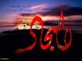 shahadate emam sajjad (11)