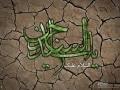 shahadate emam sajjad (6)