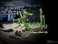 shahadate emam sajjad (8)