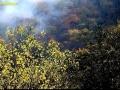 تصاویری زیبا از طبیعت پاییزی جنگل های ایران