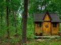 کلبه جنگلی (1).jpg
