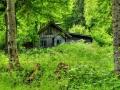 کلبه جنگلی (14).jpg