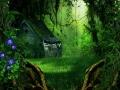 کلبه جنگلی (17).jpg