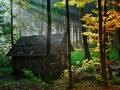 کلبه جنگلی (19).jpg
