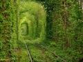 تصاویر جالب و دیدنی از گوشه و کنار دنیا