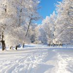 عکس طبیعت ، عکس زمستان کیفیت عالی winter Picture hd