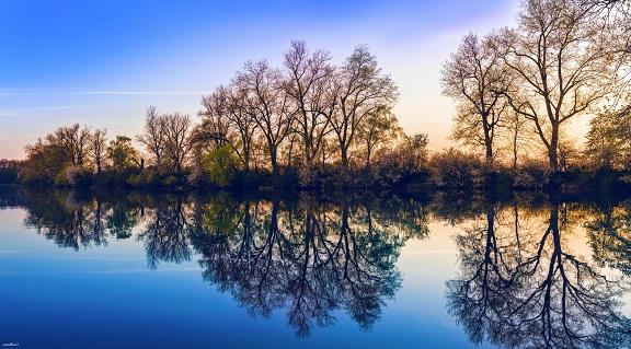 تک عکس ار دریاچه، درختان و غروب – WIDE HD – کیفیت عالی