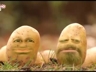 کلیپ منتشر شده از گفتگوی دو سیب زمینی قبل از دفن شدن